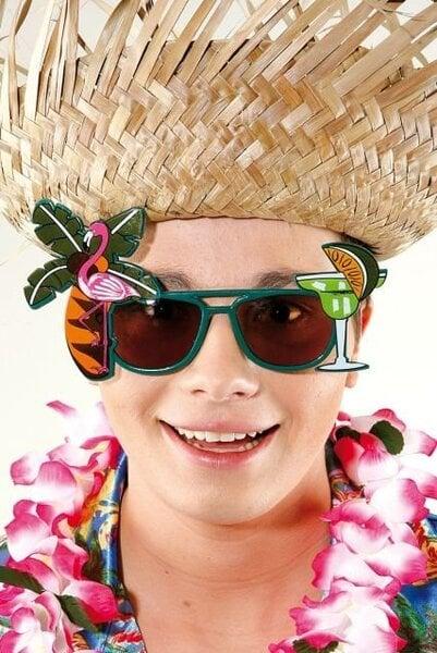 Havajietiški akiniai kaina ir informacija | Karnavaliniai kostiumai | pigu.lt