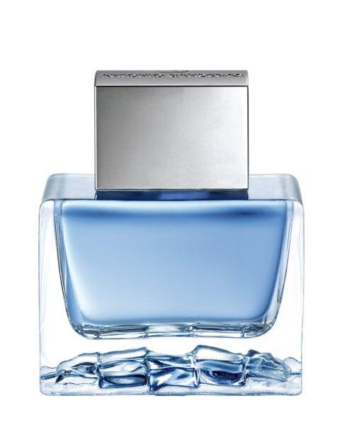 Tualetinis vanduo Antonio Banderas Blue Seduction EDT vyrams 50 ml kaina ir informacija | Kvepalai vyrams | pigu.lt