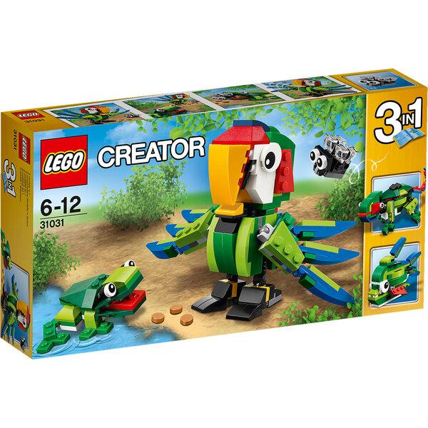 Konstruktorius LEGO® Creator 3in1 Rainforest Animals 31031 kaina ir informacija | Konstruktoriai ir kaladėlės | pigu.lt