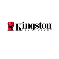 Kingston по интернету