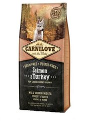 Carni Love Salmon & Turkey Puppy Large Breed 12kg kaina ir informacija | Carni Love Salmon & Turkey Puppy Large Breed 12kg | pigu.lt