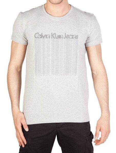 Vyriški marškinėliai Calvin Klein kaina ir informacija | Vyriški mаrškinėliai | pigu.lt