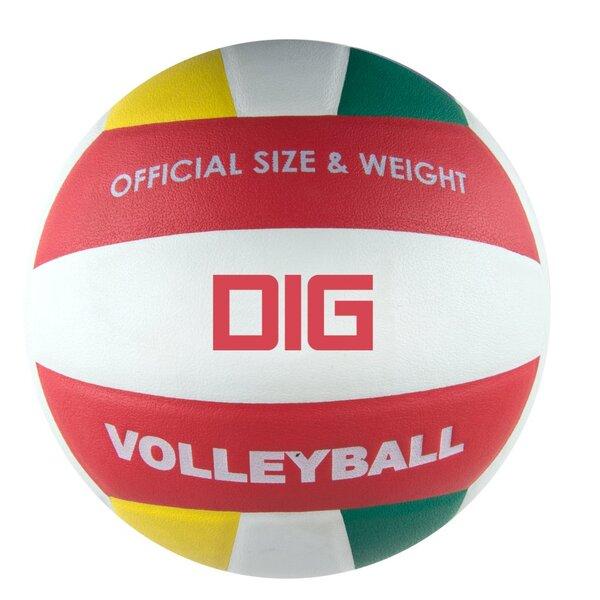 Tinklinio kamuolys Spokey Dig II