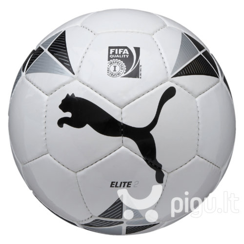 Futbolo kamuolys Puma Elite 2 (FIFA patikrintas) kaina ir informacija | Futbolas | pigu.lt