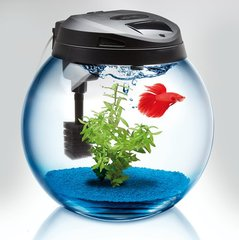 Akvariumas CLASSIC SPHERICAL TANK 37
