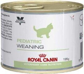 Royal Canin для молодых котят, Pediatric Weaning, 195 г цена и информация | Royal Canin для молодых котят, Pediatric Weaning, 195 г | pigu.lt