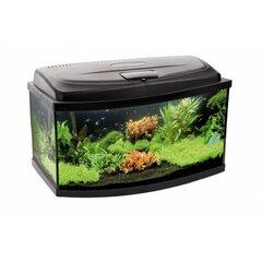 Aqua Szut akvariumo rinkinys Aqua4Kids 40 Oval kaina ir informacija | Akvariumai ir jų įranga | pigu.lt