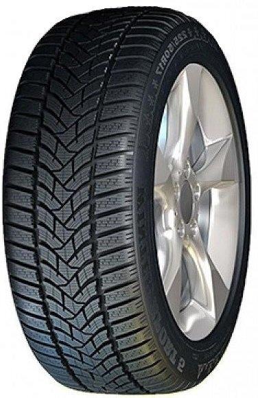 Dunlop SP Winter Sport 5 215/50R17 95 V XL MFS kaina ir informacija | Žieminės padangos | pigu.lt