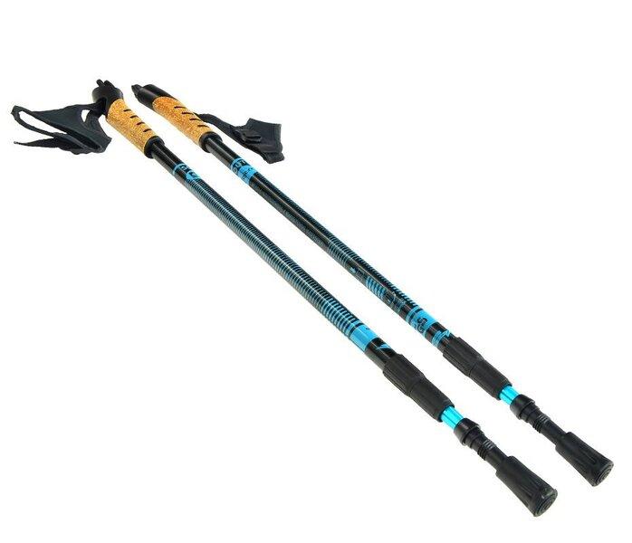 Šiaurietiško vaikščiojimo lazdos Bjorn kaina ir informacija | Vaikščiojimo lazdos | pigu.lt