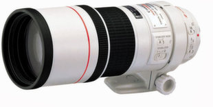 Canon EF 300mm f/4.0L IS USM, Balta
