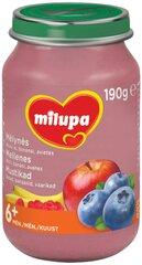Mėlynių, obuolių, bananų ir aviečių tyrelė Milupa, 6 mėn+, 190 g