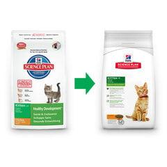 Hill's Science Plan Mature Adult 7+ Active Longevity sausas maistas katėms su vištiena, 10 kg