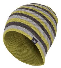 Vyriška kepurė Trespass Coaker