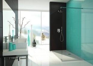 Walk-In dušo kabina Sanplast Free Line P/Free 80s kaina ir informacija | Dušo durys ir sienelės | pigu.lt