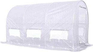 Арочная теплица 3x2 (6м2) с пленкой цена и информация | Теплицы | pigu.lt