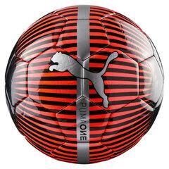Futbolo kamuolys Puma One Chrome, 4 dydis