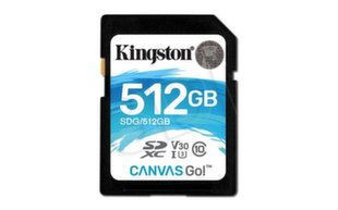Kingston SDG/512GB
