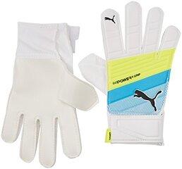 Вратарские перчатки Puma