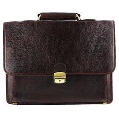 Vyriškas portfelis Gajane kaina ir informacija | Vyriškas portfelis Gajane | pigu.lt