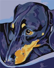 Картина - раскраска по номерам, T16130078
