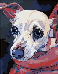 Картина - раскраска по номерам, T16130089 цена и информация | Картины по номерам | pigu.lt