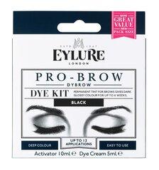 Antakių dažai Eylure Eyl Pro-Brow Dybrow kaina ir informacija | Antakių dažai, pieštukai | pigu.lt
