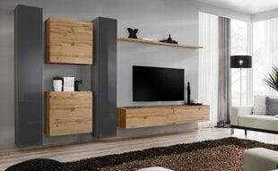 Sekcija Switch VI, pilkos/ąžuolo spalvos kaina ir informacija | Sekcijos | pigu.lt