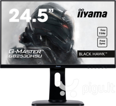 Iiyama G-Master Black Hawk GB2530HSU-B1, 24.5'' kaina ir informacija | Iiyama G-Master Black Hawk GB2530HSU-B1, 24.5'' | pigu.lt