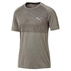 Vyriški marškinėliai Puma Basic kaina ir informacija | Vyriška sportinė apranga | pigu.lt