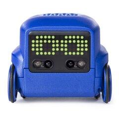 Interaktyvus robotas Boxer, 6045398/6046962