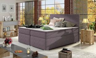 Lova NORE Divalo, 160x200 cm, violetinė kaina ir informacija | Lovos | pigu.lt