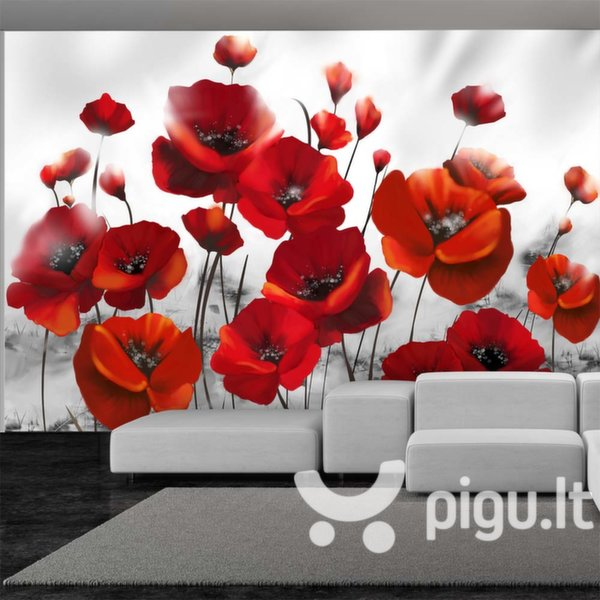 Fototapetas - Poppies in the Moonlight