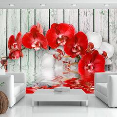 Fototapetas - Ruby orchid kaina ir informacija | Fototapetai | pigu.lt