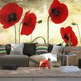 Fototapetas - Golden Field of Poppies kaina ir informacija | Fototapetai | pigu.lt