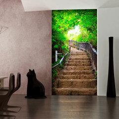 Durų fototapetas - Photo wallpaper – Stairs from nature I kaina ir informacija | Fototapetai | pigu.lt