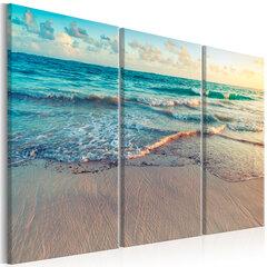 Paveikslas - Beach in Punta Cana (3 Parts) kaina ir informacija | Reprodukcijos, paveikslai | pigu.lt