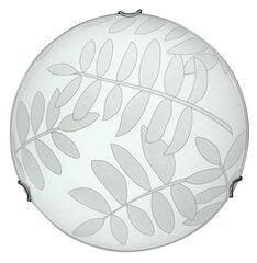 Candellux lubinis šviestuvas Letycja kaina ir informacija | Candellux lubinis šviestuvas Letycja | pigu.lt