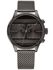 Мужские часы Tommy Hilfiger Icon 1791597 цена и информация | Мужские часы | pigu.lt