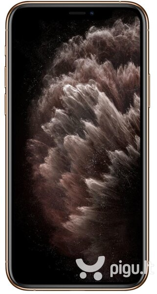 Apple iPhone 11 Pro Max, 256GB, Gold internetu