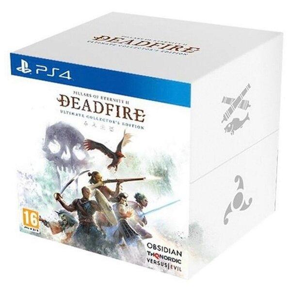 Pillars of Eternity II Deadfire ED PS4 kaina ir informacija | Kompiuteriniai žaidimai | pigu.lt
