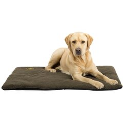 Hubertus Gold gultas šunims 70cmx100cm kaina ir informacija | Guoliai, pagalvėlės | pigu.lt