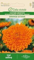Vaistinės medetkos Orange gitana kaina ir informacija | Gėlių sėklos | pigu.lt