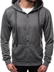 Džemperis vyrams Ugira, pilkas kaina ir informacija | Džemperiai vyrams | pigu.lt