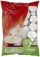 Arbatinės žvakutės Bolsius, 50 vnt. kaina ir informacija | Arbatinės žvakutės Bolsius, 50 vnt. | pigu.lt