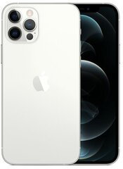 Apple iPhone 12 Pro, 256GB, Silver kaina ir informacija | Apple iPhone 12 Pro, 256GB, Silver | pigu.lt
