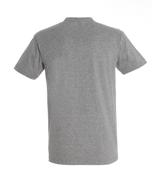 Marškinėliai vyrams Best Party Maker, pilka internetu