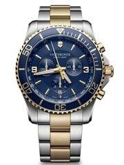 Vyriškas laikrodis Victorinox 241791 цена и информация | Мужские часы | pigu.lt