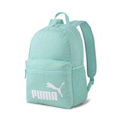 Kuprinė Puma Phase, 21 l, mėlyna kaina ir informacija | Kuprinės ir krepšiai | pigu.lt