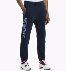 Sportinės kelnės vyrams Tommy Hilfiger Essential College kaina ir informacija | Sportinė apranga vyrams | pigu.lt