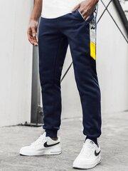Laisvalaikio kelnės Super, mėlynos kaina ir informacija | Vyriškos kelnės | pigu.lt
